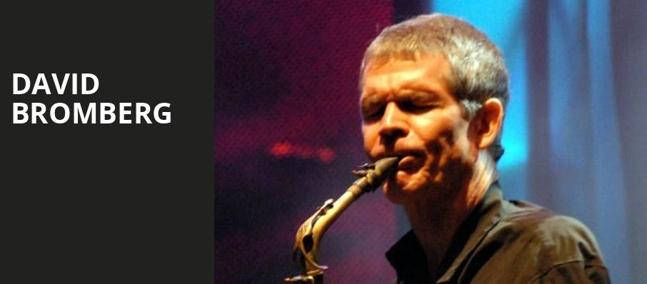 David Bromberg, One World Theatre, Austin